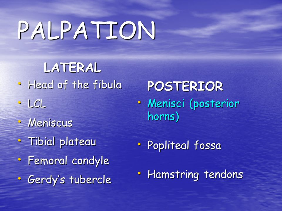 PALPATION LATERAL POSTERIOR Head of the fibula LCL Meniscus