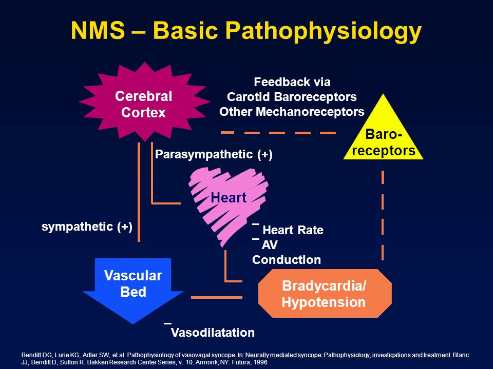 NMS – Basic Pathophysiology