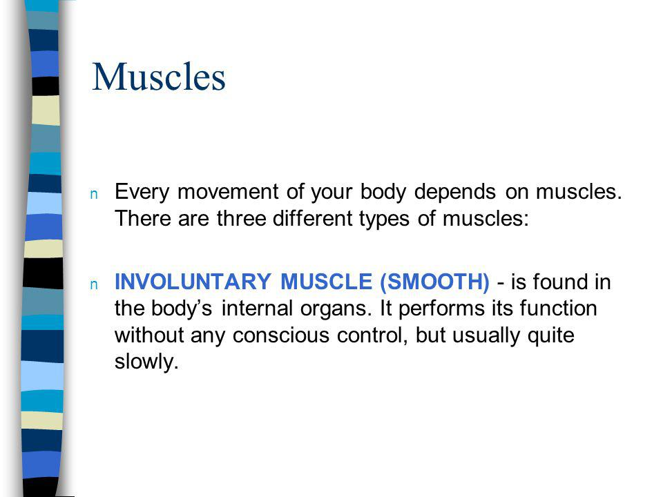 Muscles Every movement of your body depends on muscles. There are three different types of muscles: