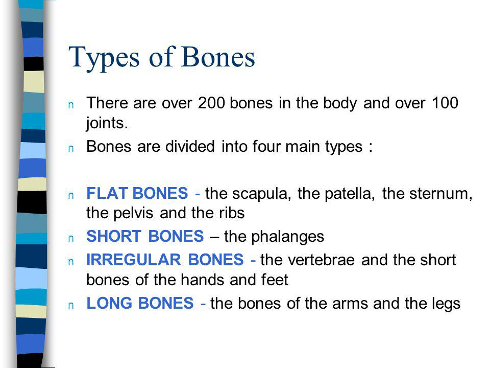 Types of Bones There are over 200 bones in the body and over 100 joints. Bones are divided into four main types :