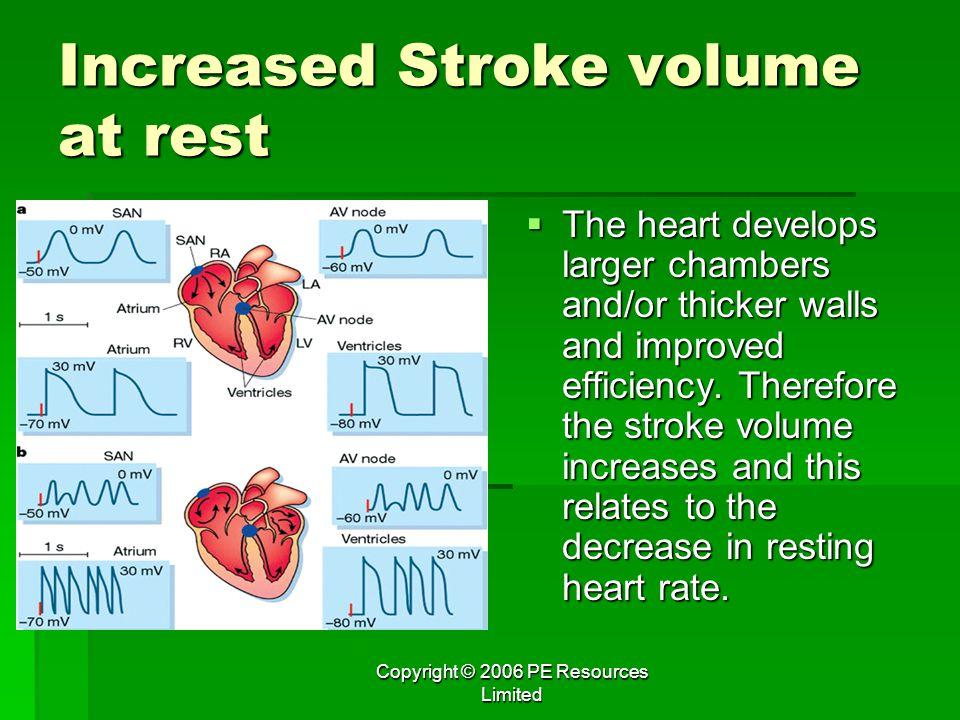 Increased Stroke volume at rest
