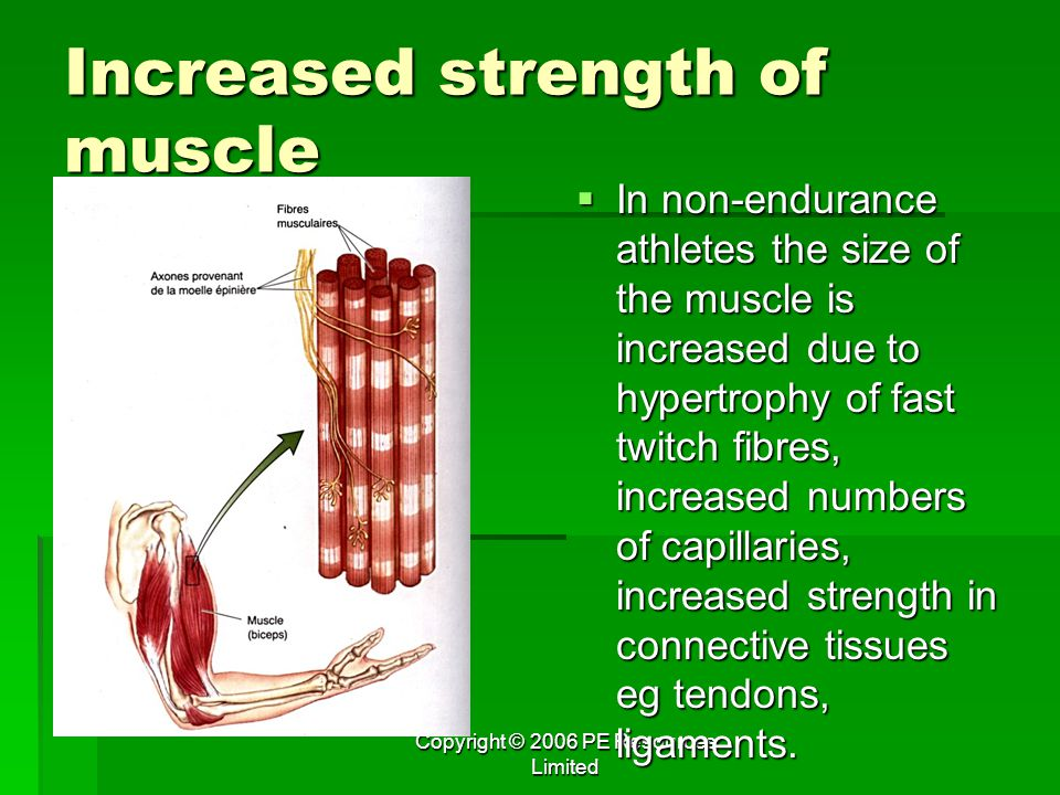 Increased strength of muscle