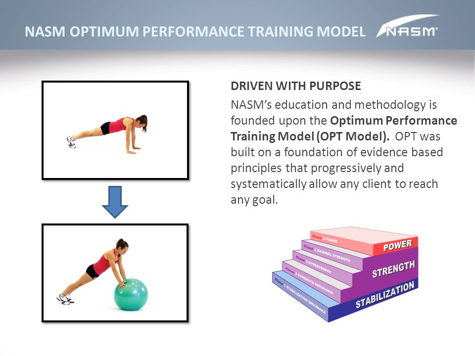 NASM OPTIMUM PERFORMANCE TRAINING MODEL