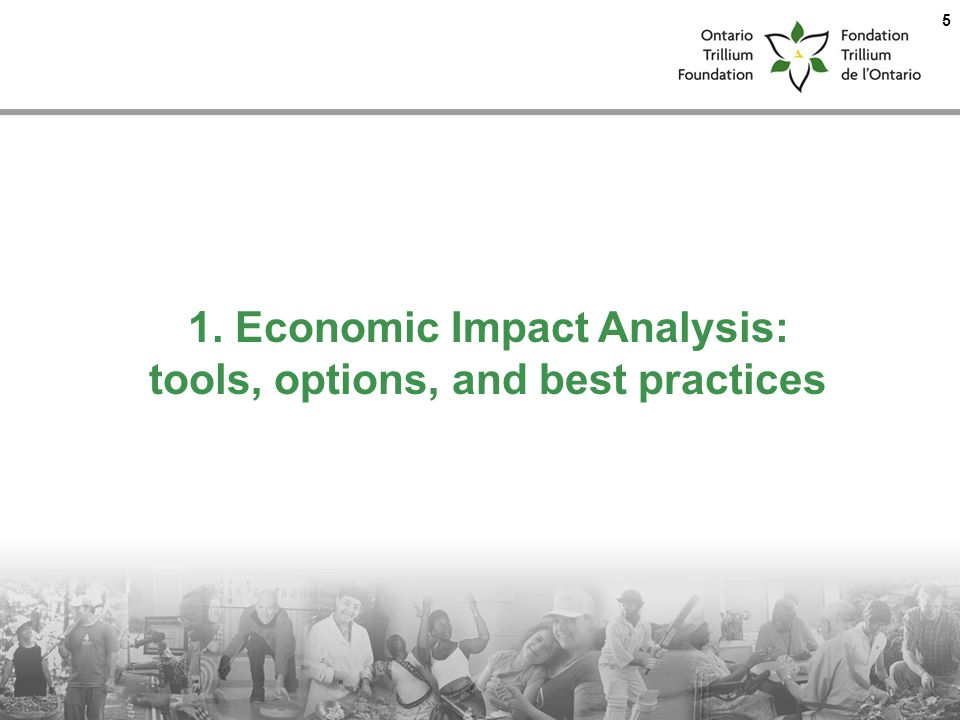1. Economic Impact Analysis: tools, options, and best practices