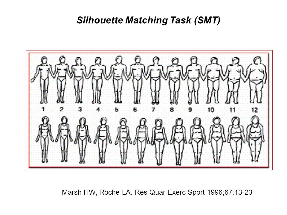Silhouette Matching Task (SMT)