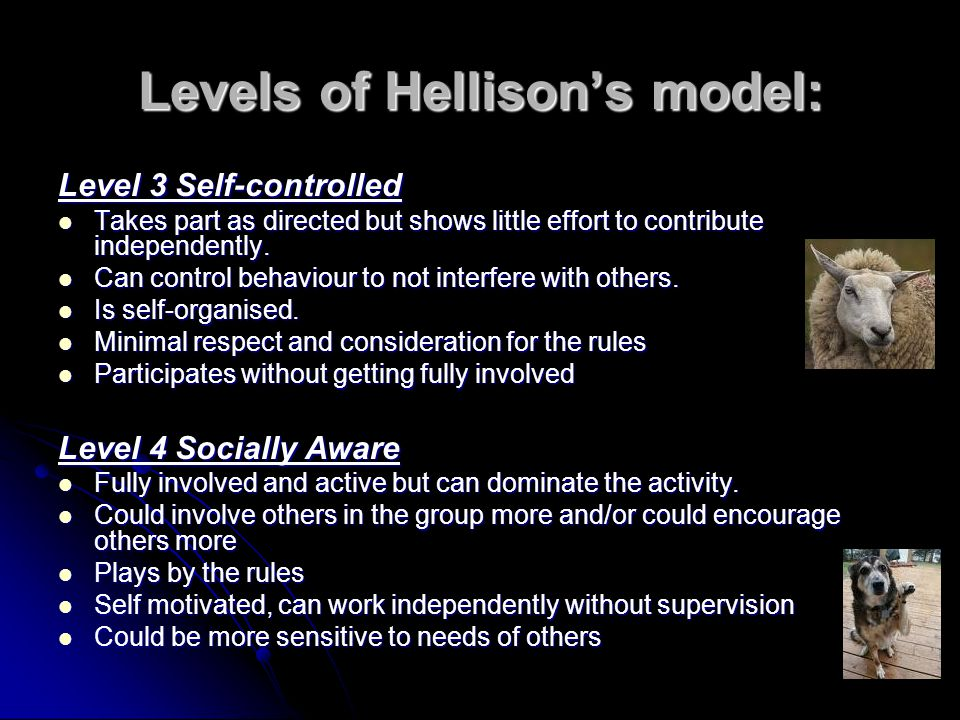Levels of Hellison's model: