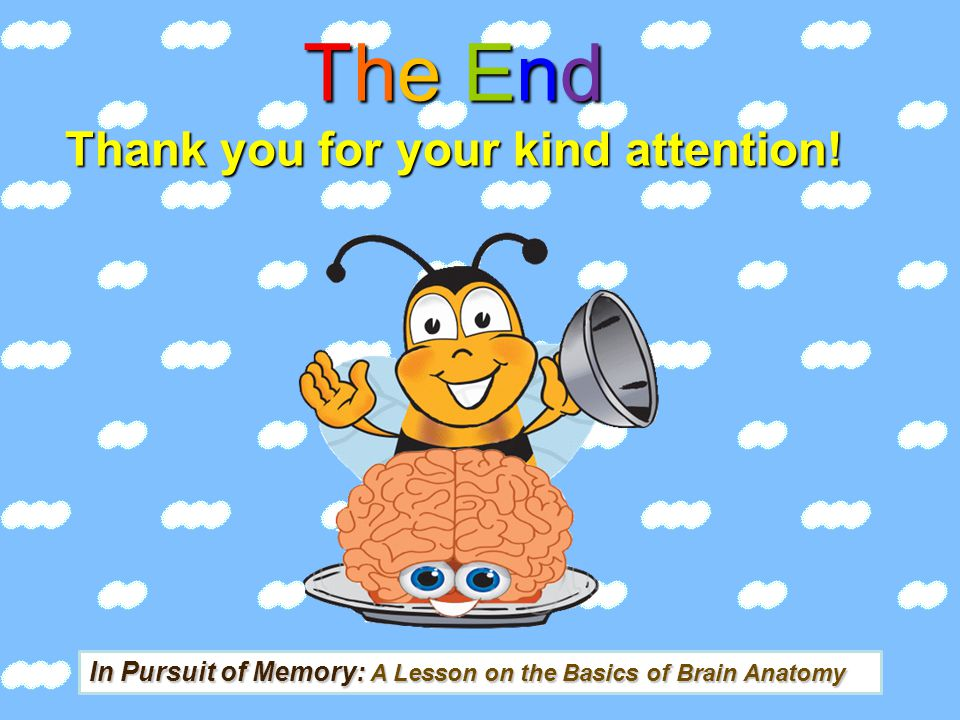 The End Thank you for your kind attention!