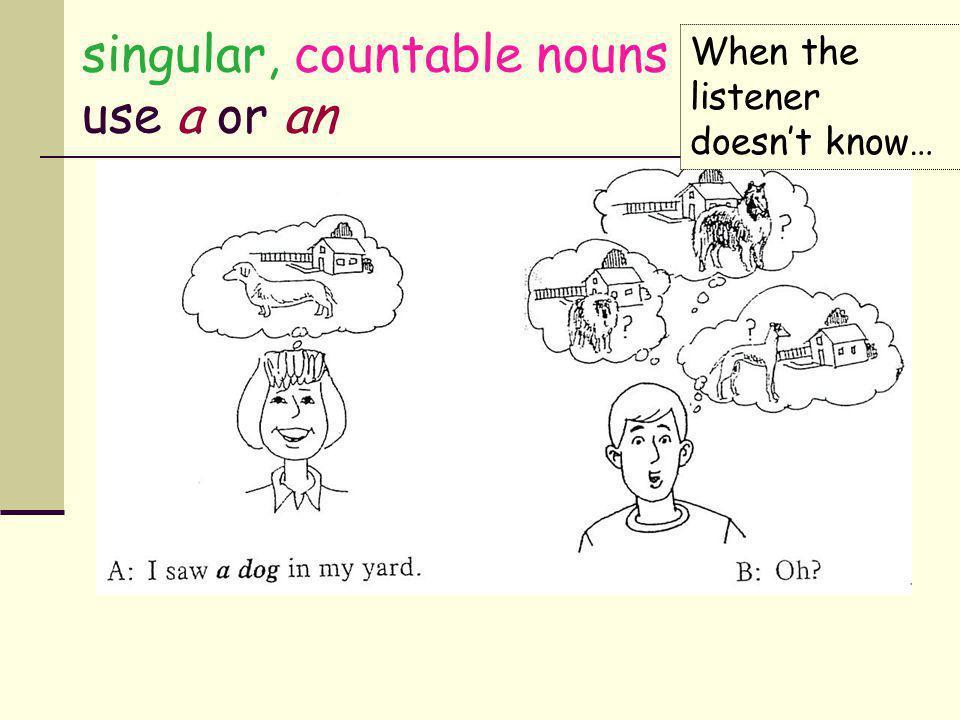 singular, countable nouns use a or an