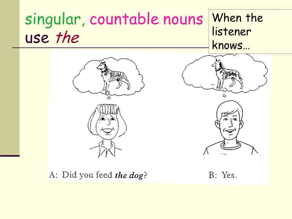 singular, countable nouns use the