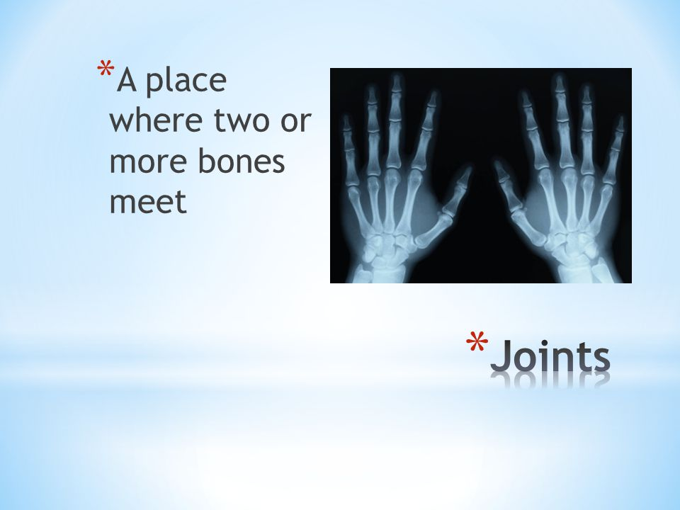 A place where two or more bones meet