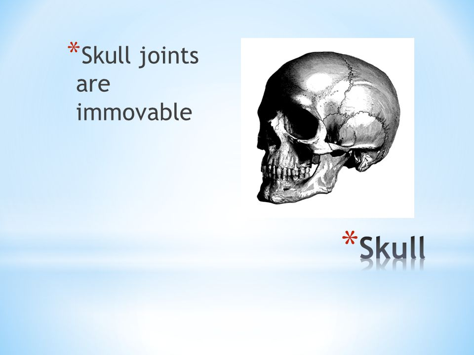 Skull joints are immovable