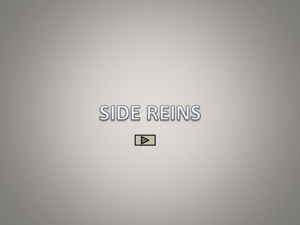 SIDE REINS
