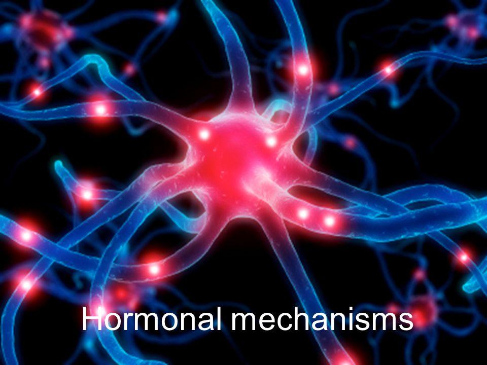 Hormonal mechanisms