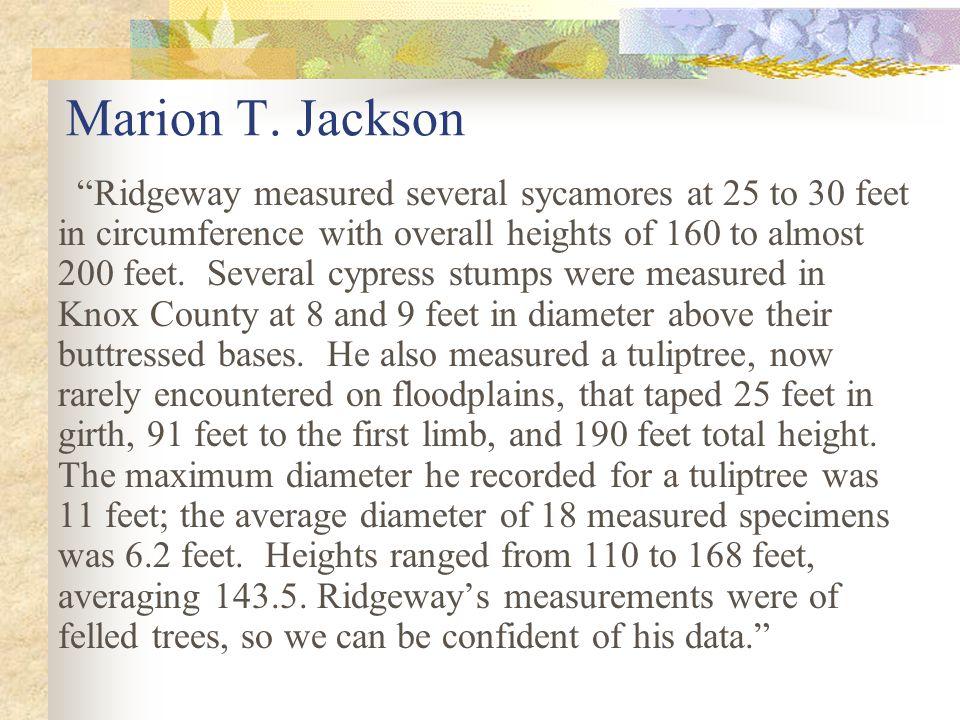 Marion T. Jackson
