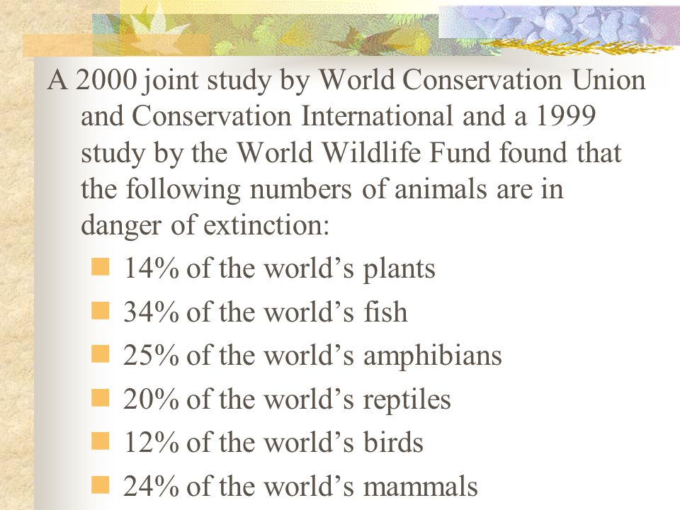 A 2000 joint study by World Conservation Union and Conservation International and a 1999 study by the World Wildlife Fund found that the following numbers of animals are in danger of extinction: