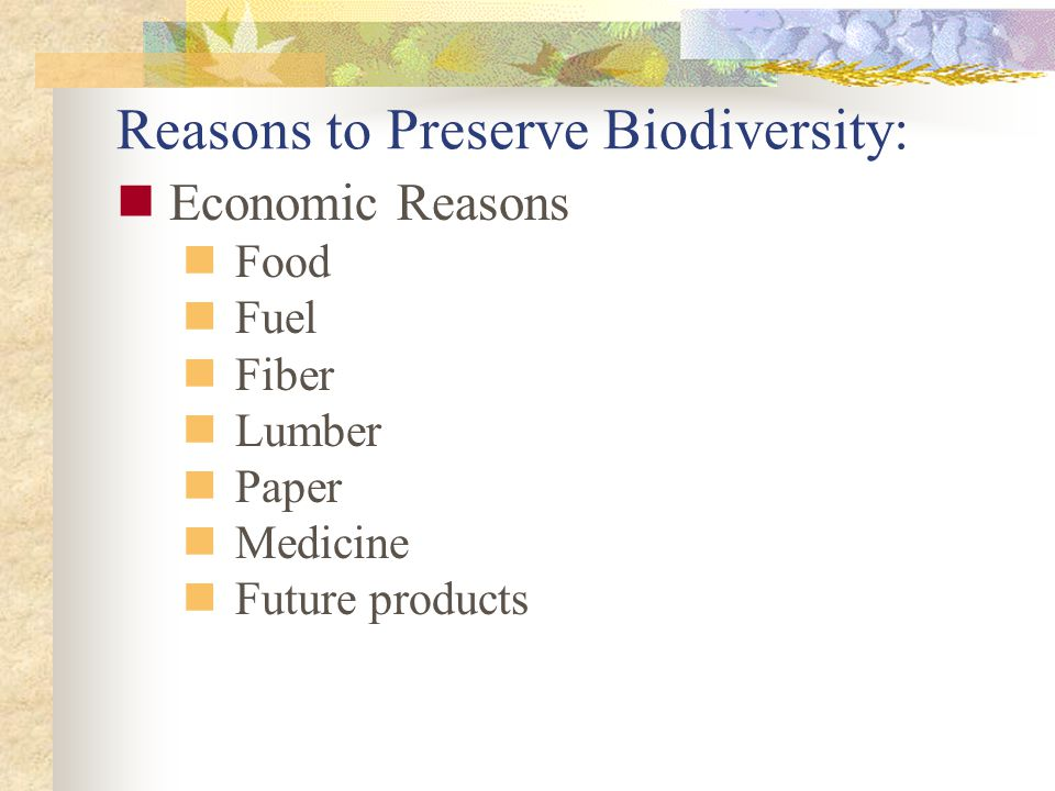 Reasons to Preserve Biodiversity:
