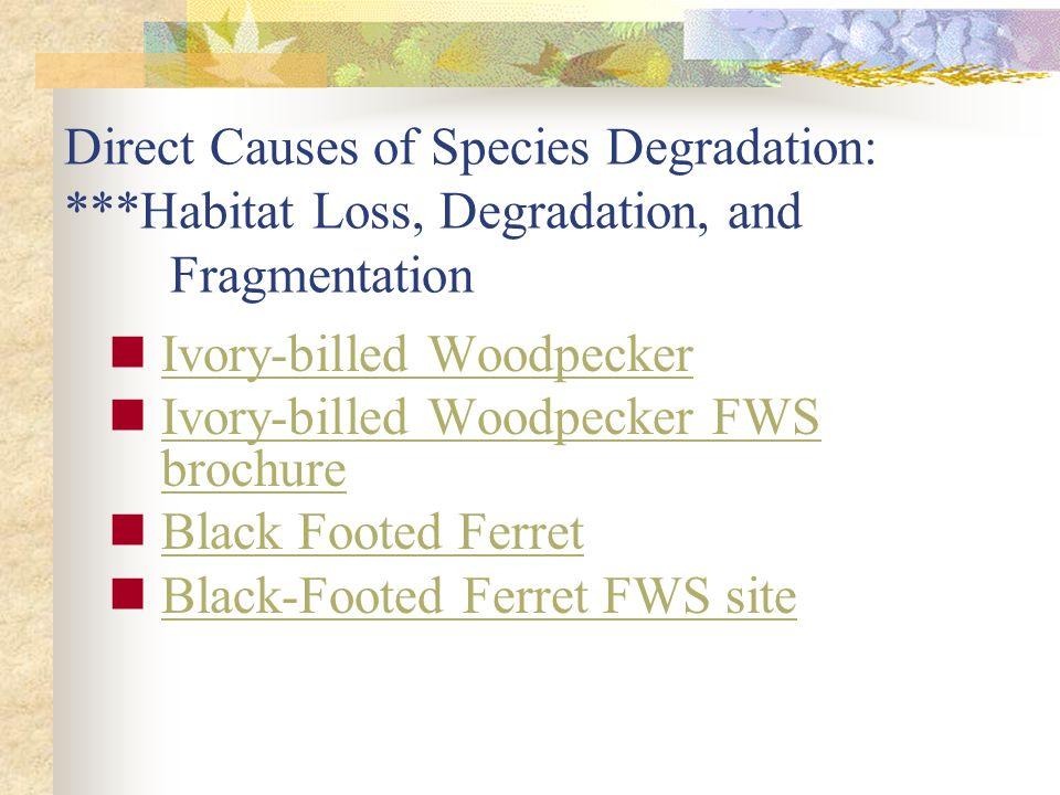 Direct Causes of Species Degradation:. Habitat Loss, Degradation, and