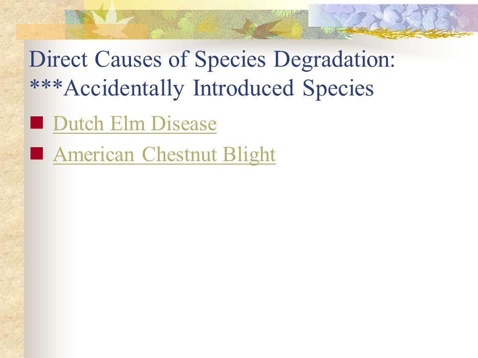 Direct Causes of Species Degradation: ***Accidentally Introduced Species