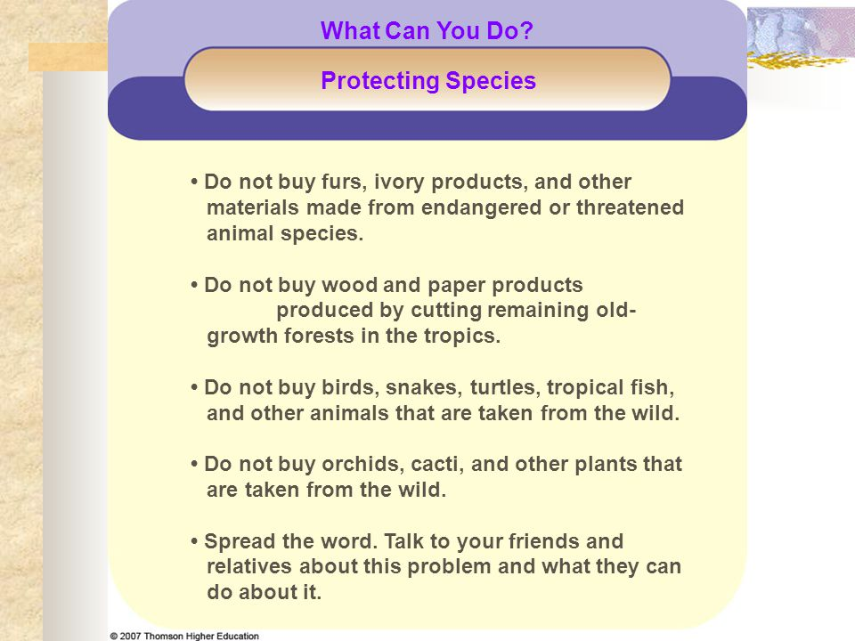 What Can You Do Protecting Species