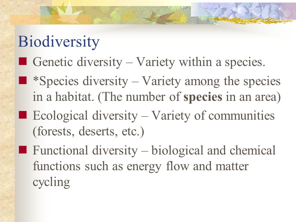 Biodiversity Genetic diversity – Variety within a species.