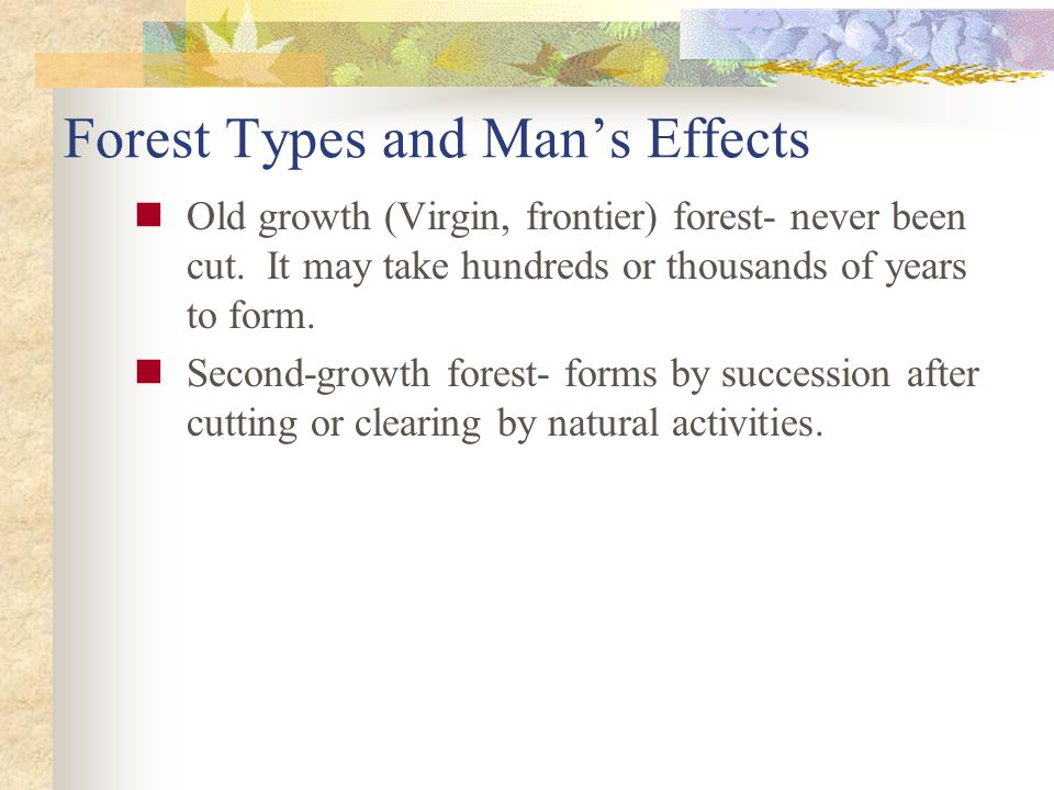 Forest Types and Man's Effects