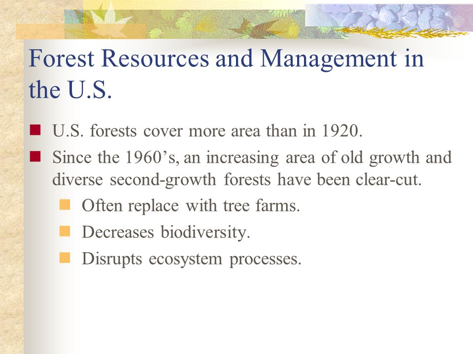 Forest Resources and Management in the U.S.
