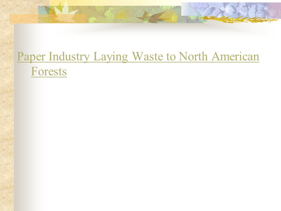 Paper Industry Laying Waste to North American Forests