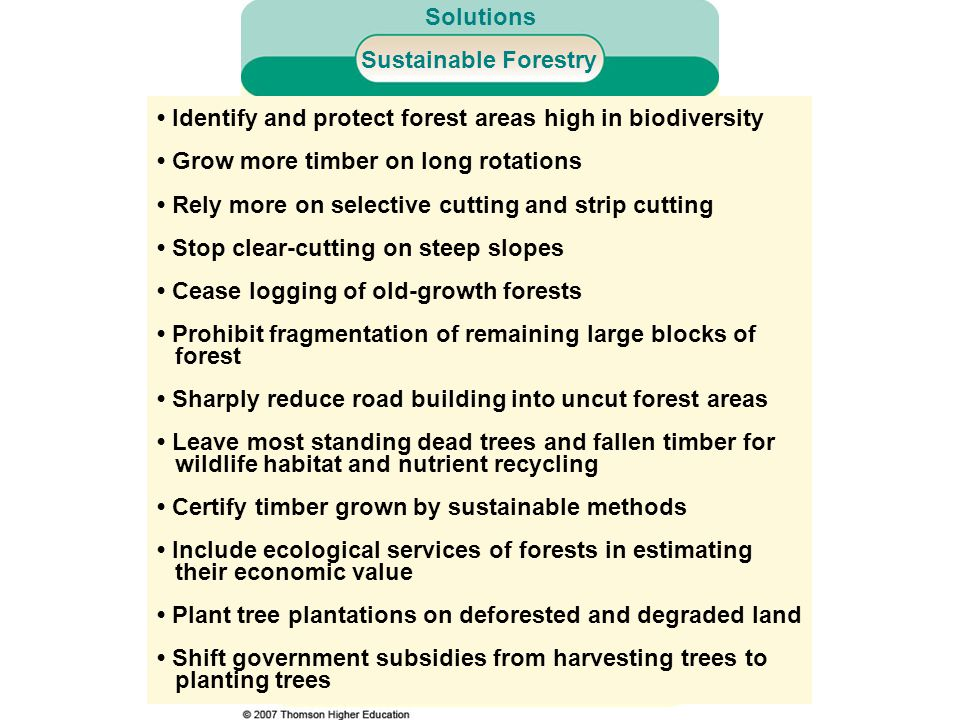 • Identify and protect forest areas high in biodiversity