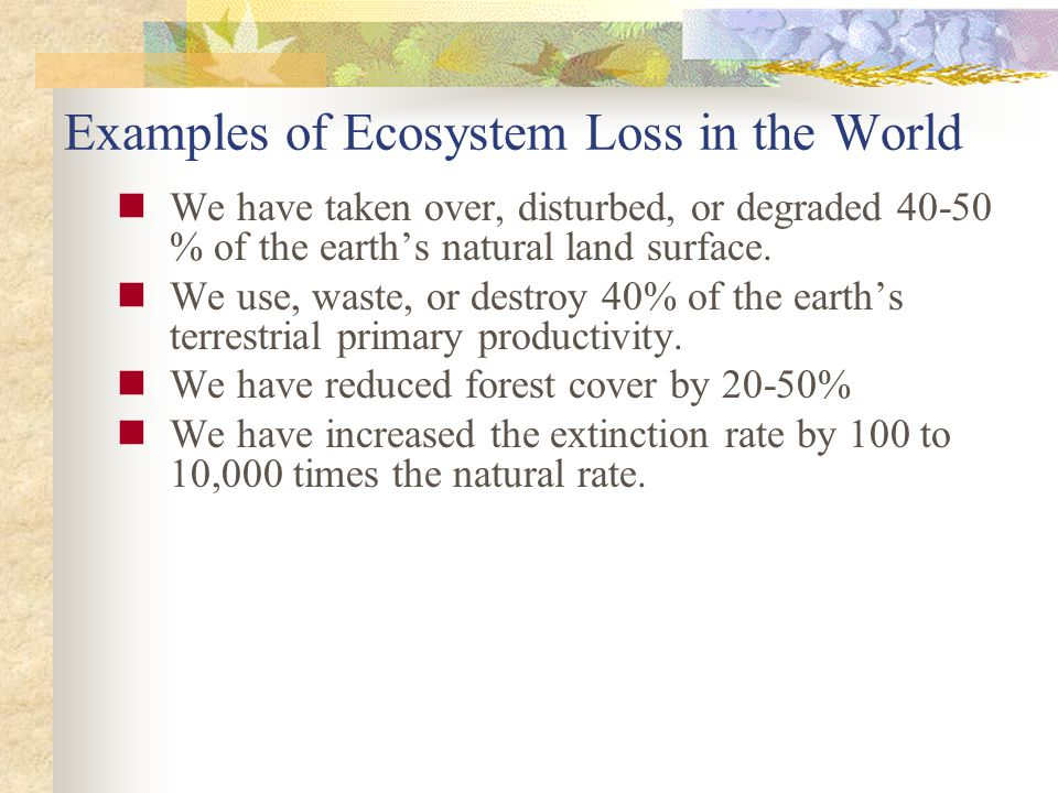 Examples of Ecosystem Loss in the World