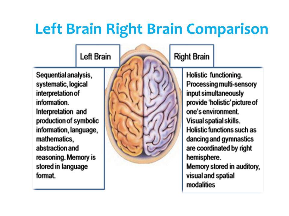 Left Brain Right Brain Comparison