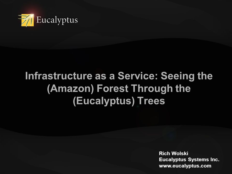Infrastructure as a Service: Seeing the (Amazon) Forest Through the (Eucalyptus) Trees