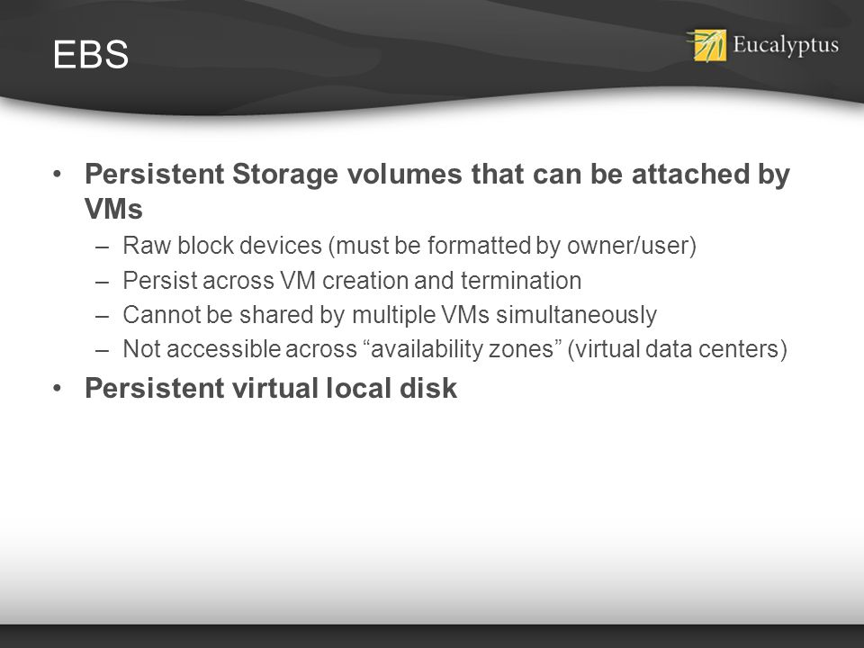 EBS Persistent Storage volumes that can be attached by VMs