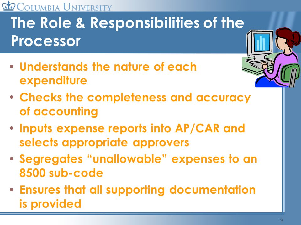 The Role & Responsibilities of the Processor