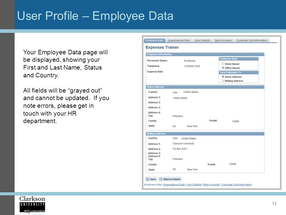 User Profile – Employee Data