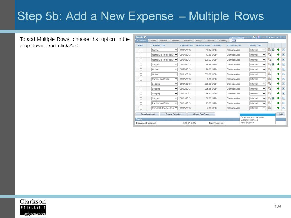 Step 5b: Add a New Expense – Multiple Rows