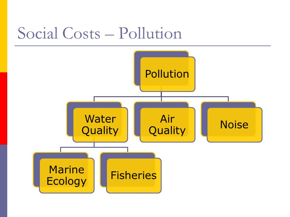Social Costs – Pollution