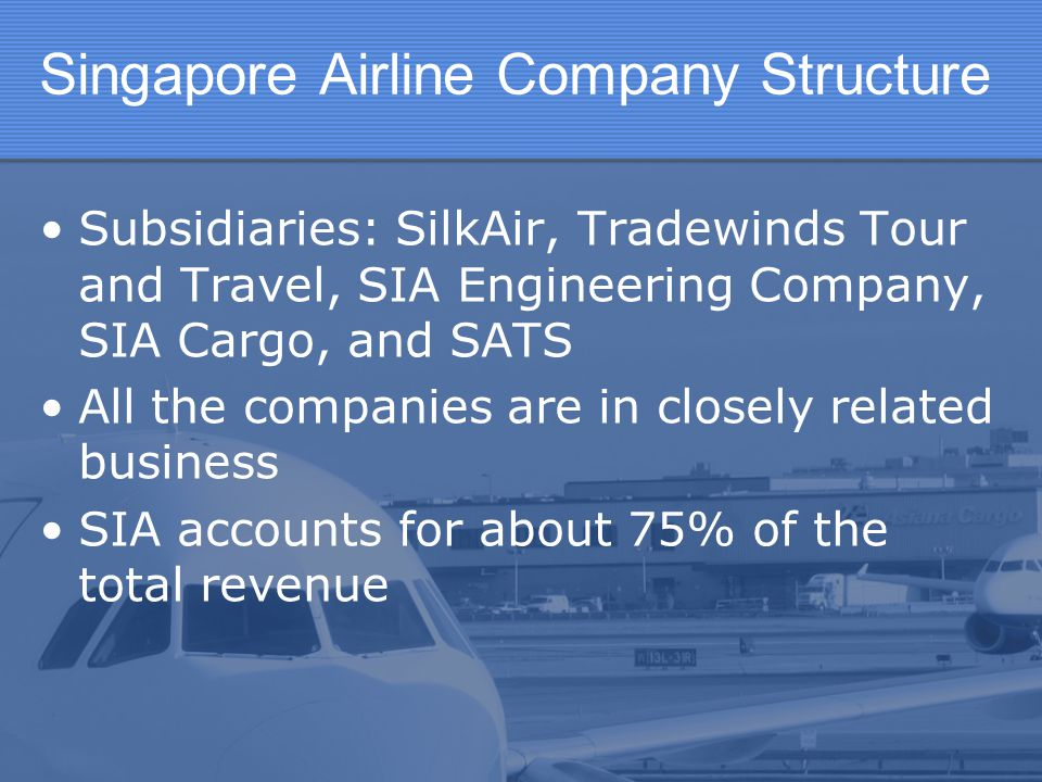 Singapore Airline Company Structure