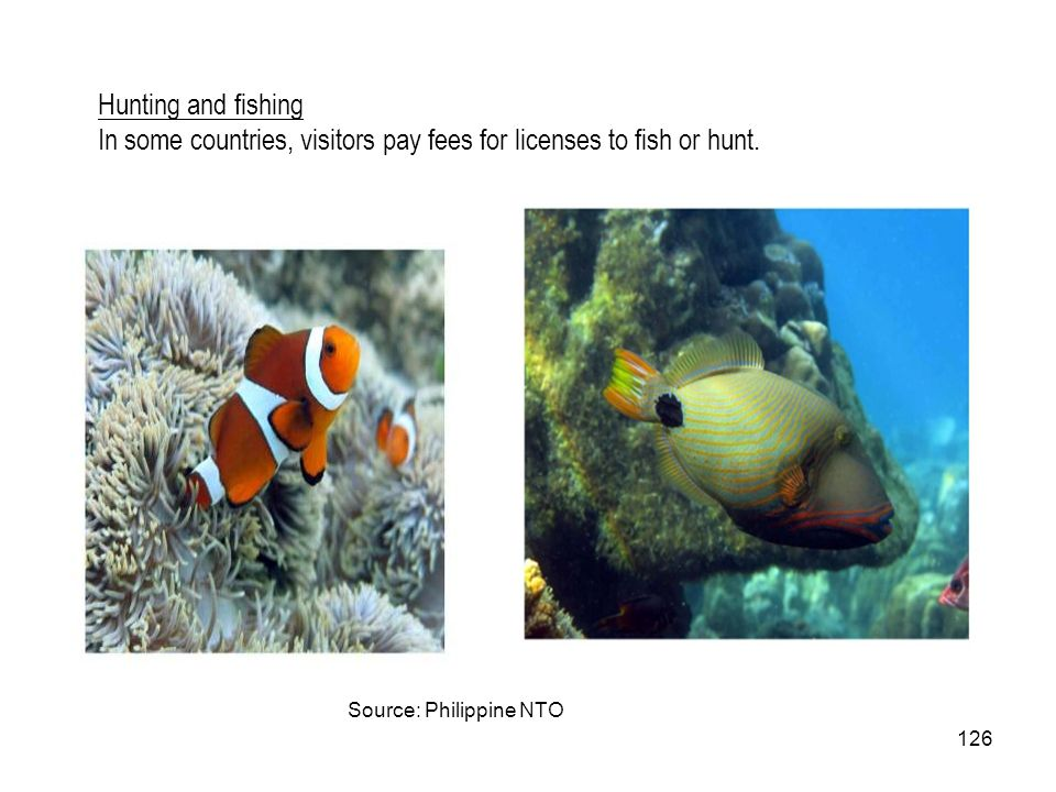 In some countries, visitors pay fees for licenses to fish or hunt.