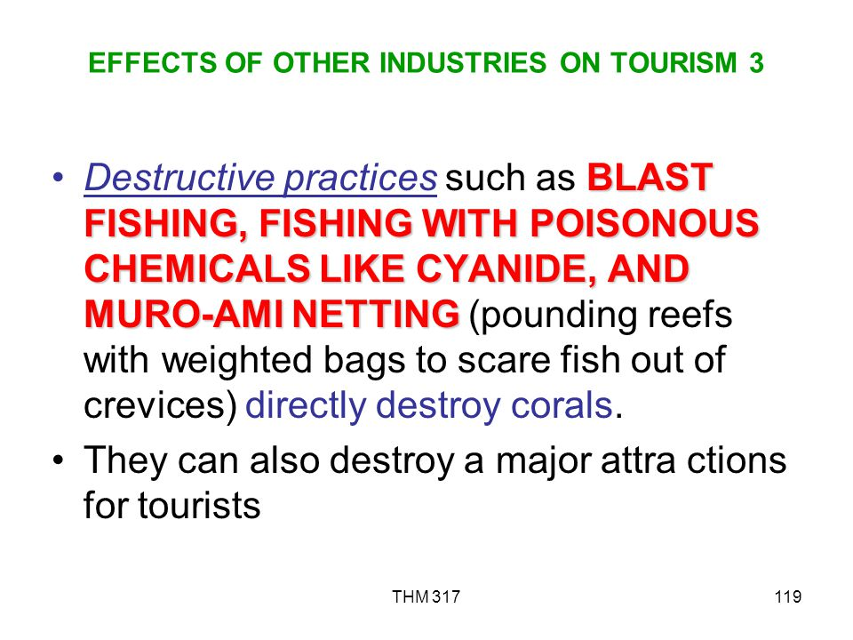 EFFECTS OF OTHER INDUSTRIES ON TOURISM 3