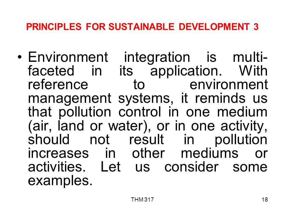 PRINCIPLES FOR SUSTAINABLE DEVELOPMENT 3