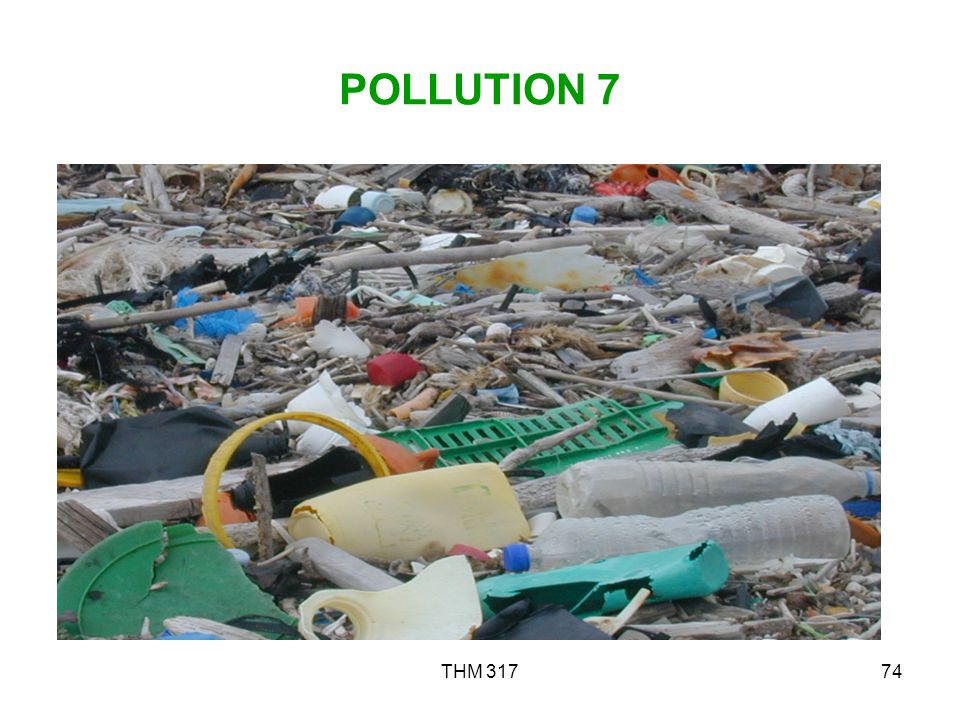 POLLUTION 7 THM 317