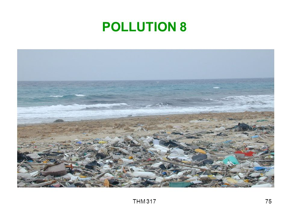 POLLUTION 8 THM 317