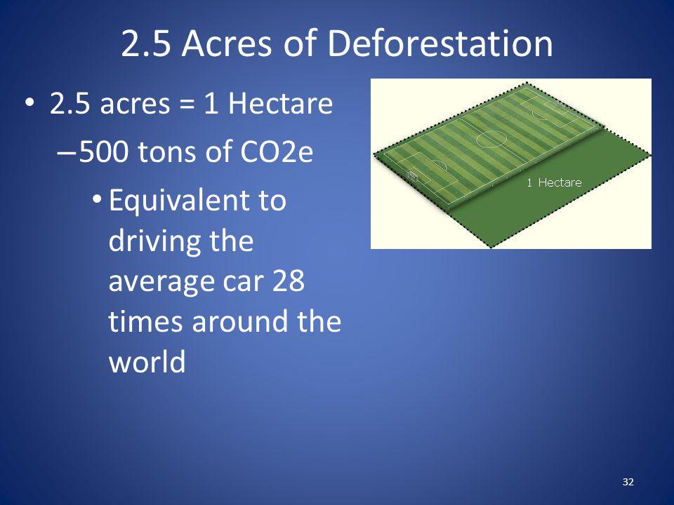 2.5 Acres of Deforestation