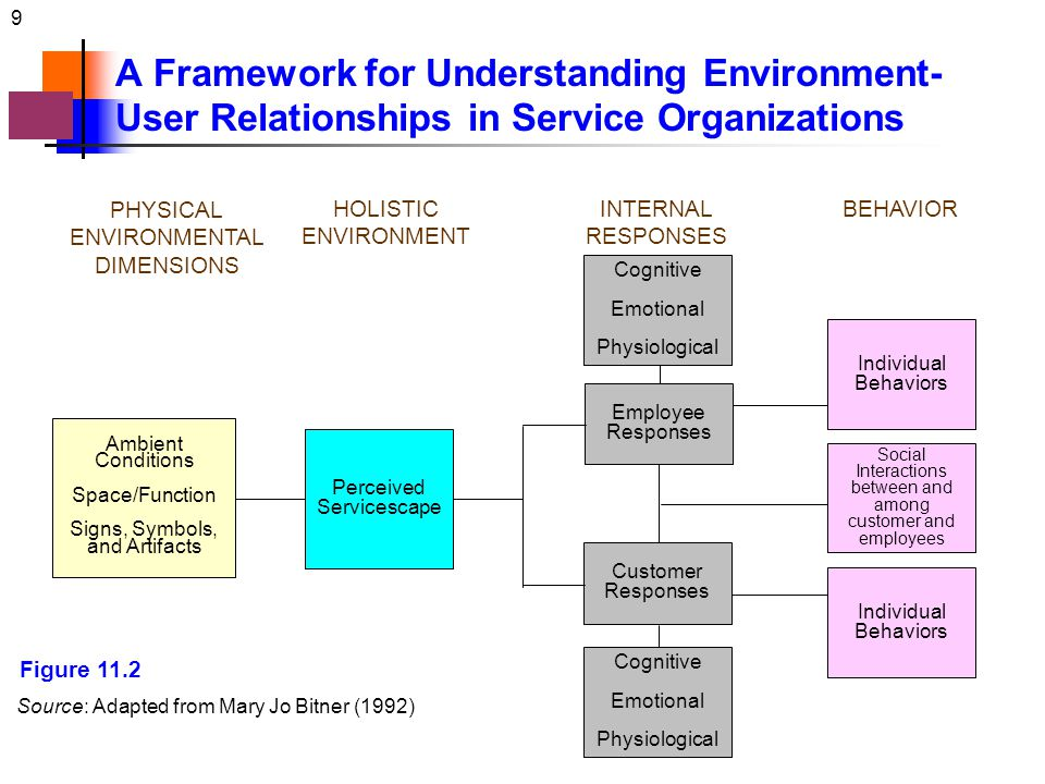A Framework for Understanding Environment-User Relationships in Service Organizations