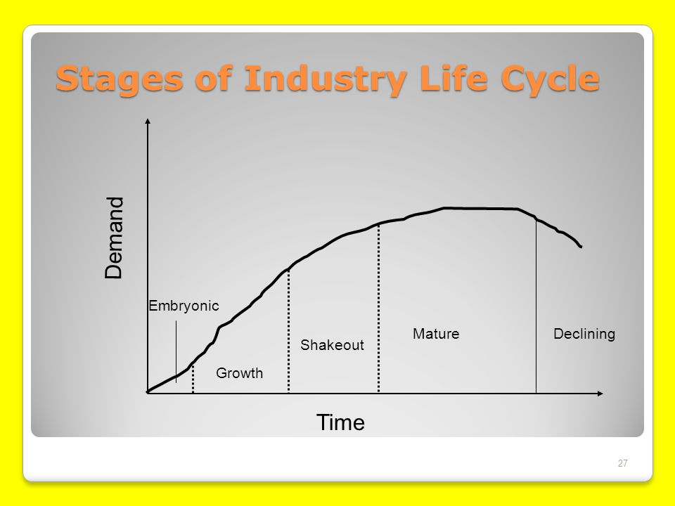 Stages of Industry Life Cycle