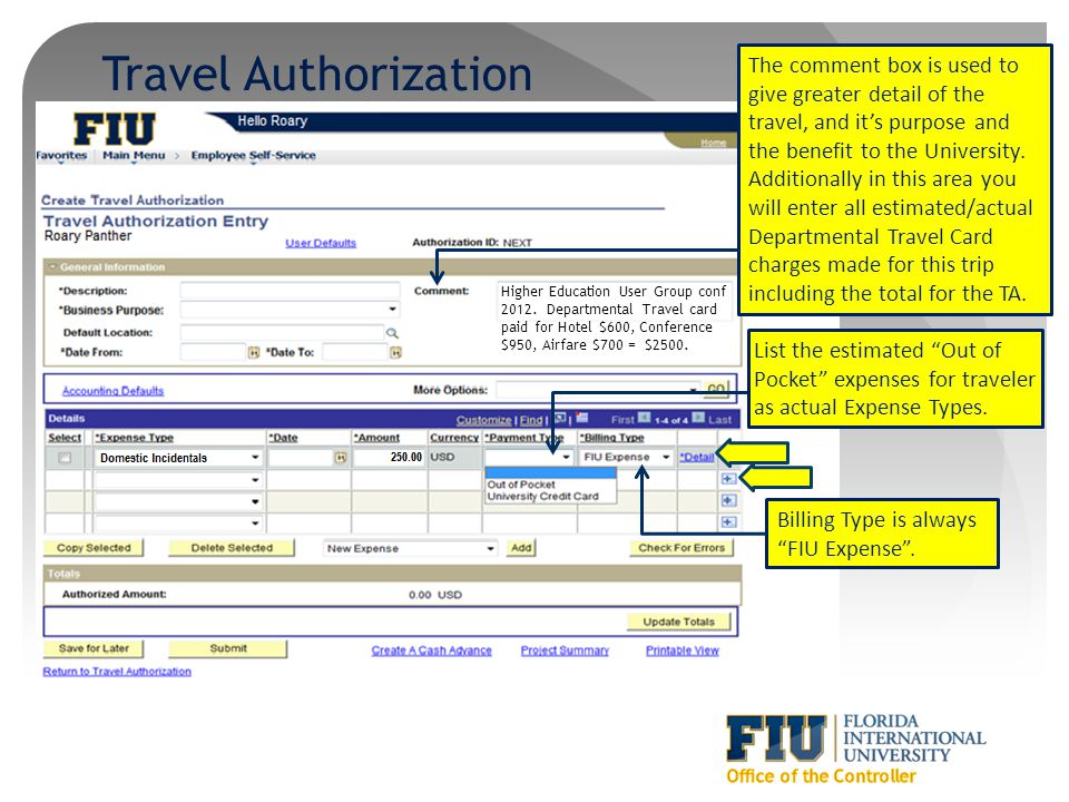 Travel Authorization The comment box is used to give greater detail of the travel, and it's purpose and the benefit to the University.
