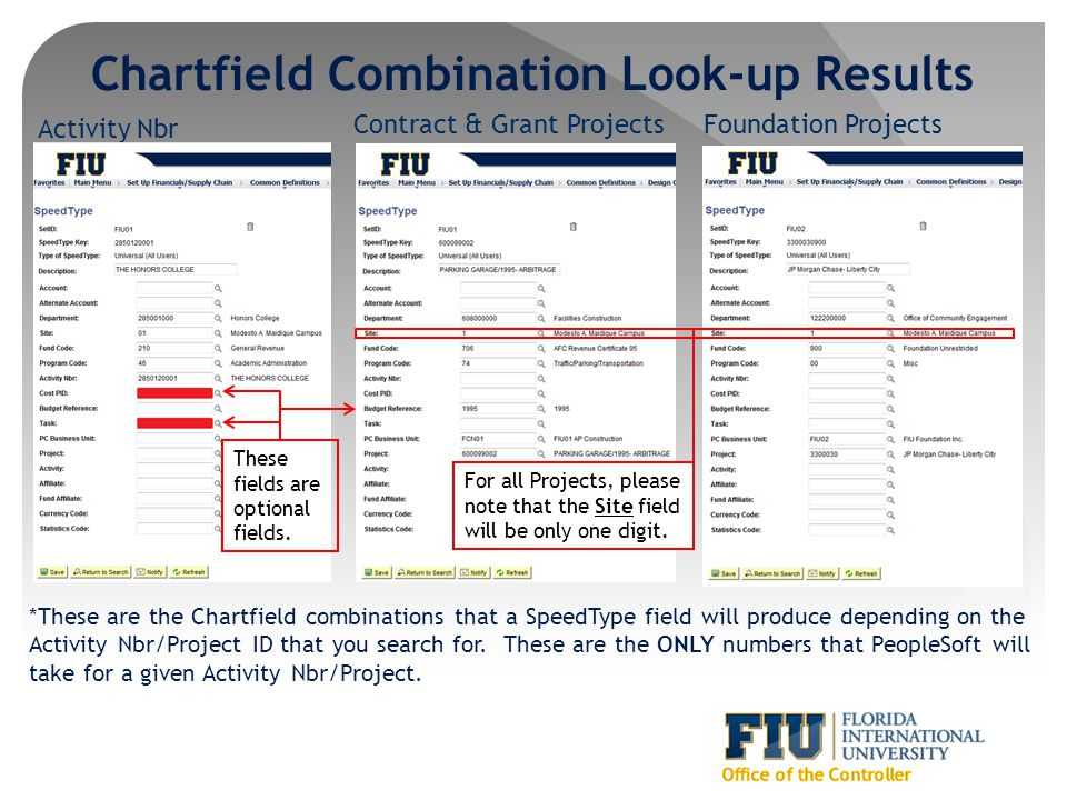 Chartfield Combination Look-up Results