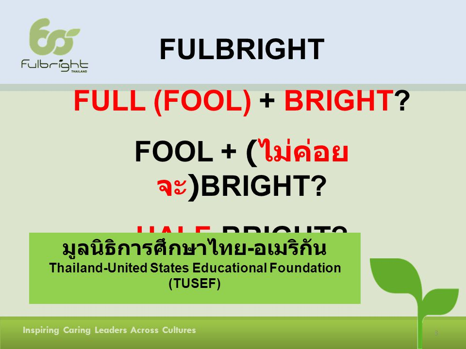 FULBRIGHT FULL (FOOL) + BRIGHT FOOL + (ไม่ค่อยจะ)BRIGHT HALF-BRIGHT