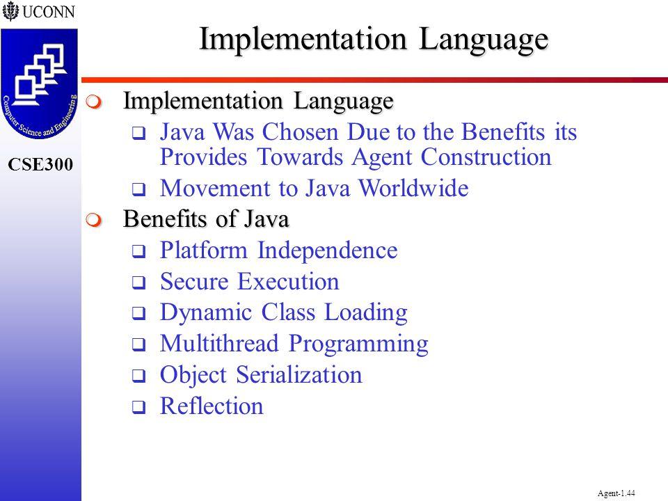 Implementation Language