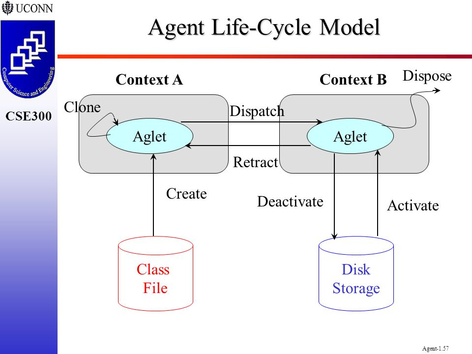 Agent Life-Cycle Model